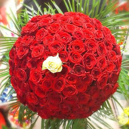 101 roze! Rožu cenas aplūkot sadaļā SORTIMENTS
